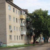 Кагыкина 9, Ленинское