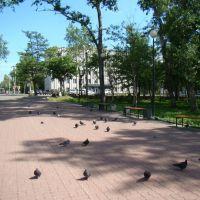 Городской сквер, Николаевск-на-Амуре