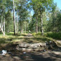 Парк, место скульптуры девочки, Николаевск-на-Амуре