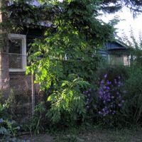 Мой домик в деревне!, Переяславка