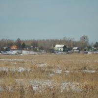 Train to Khabarovsk (2012-11) - Local houses leaving IN station, Смидович