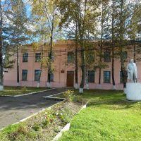 детская музыкальная школа, Смидович