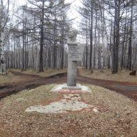 Памятник Виталию Бонивуру, Советская Гавань