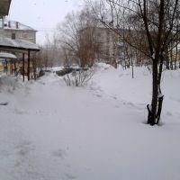 Двор Киевской, 3а, Советская Гавань