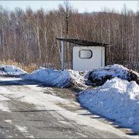 Остановка автобусов, Троицкое