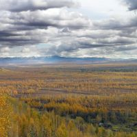 Bogs and Bureinsky ridge - Мари и Буреинский хребет, Чегдомын