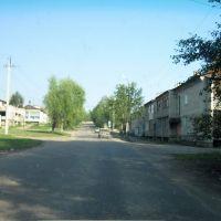ул Заводская, Чегдомын