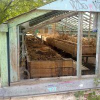 Приусадебное хозяйство школы, Снежинск