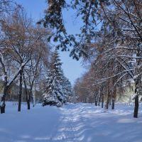 Lenin Avenue, Озерск