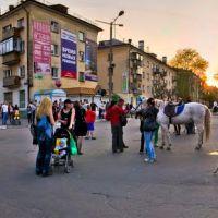 9 мая. Картинка с лошадкой, собакой и осликом., Озерск