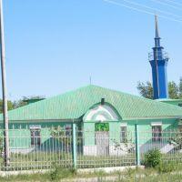 Мечеть пос. Агаповка, улица Правобережная (Agapovka mosque), Агаповка