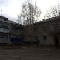 Один из домов на ул.Рабочей, Агаповка