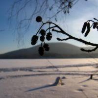Тургояк, Гора Липовская / Turgoyak(winter view), Бреды