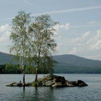 Берёзы на озере Тургояк / Birches on Lake Turgoyak, Бреды