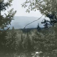 На подходе к Ицилу, 1982, Бреды
