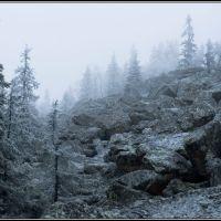 Foggy  slope, Бреды