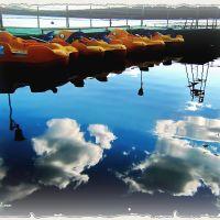 ...на воде как в небе/on water as in the sky !!!, Бреды