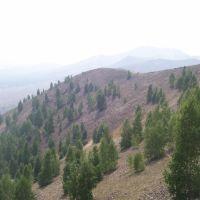 Золотогорский пейзаж / The landscape, Карабаш