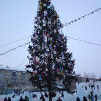 Ёлка 2011, Копейск