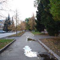 Осень на улице Ленина, Копейск