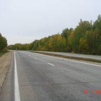 Дорога в Пласт 3, Пласт