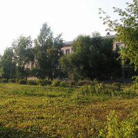 Школа № 12, Пласт