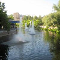 парк в Аше, Сим