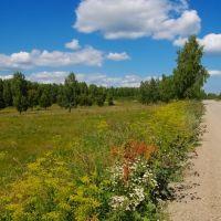Обочина / Road side, Чебаркуль