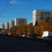 Проспект Ленина / Lenin Avenue, Челябинск