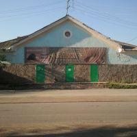 Баня. 2011 год., Южно-Уральск