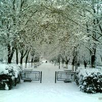 Назрань - Nazran (Парк, аллея, зима, завод), Назрань