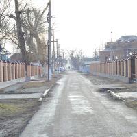 ул. Московская., Наурская