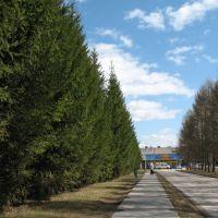 Сибириада, Советское