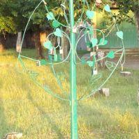 Акша. Дерево любви, Акша