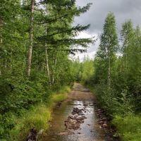 Дорога Ключевский-Соболино 13, Давенда
