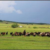 Walk in the Mongolian Plateau 003, Жиндо