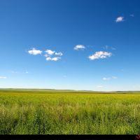 草原, Калга