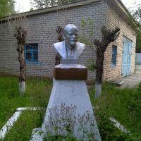 Ленин в Могоче, Могоча