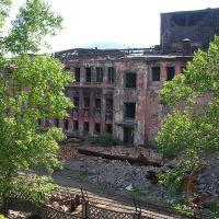 Руины завода 4, Петровск-Забайкальский