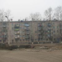 Дом01, Чернышевск