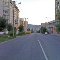 ул. Бутина, Чита