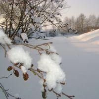 Зимнее утро, Батырева