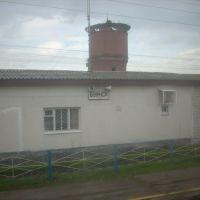 Станция Буинск, Буинск