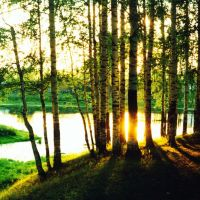 Чернореченский пруд (вид с парка), Ибреси