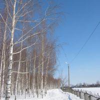 26.02.2010, Канаш