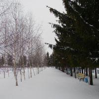 Парк., Красноармейское