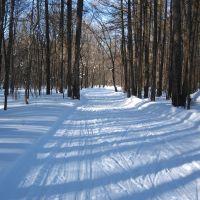 Лыжная трасса, Кугеси