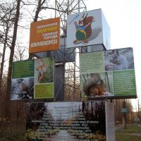 У входа в рощу - о белках, Новочебоксарск