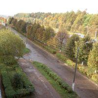 дорога из окна, Новочебоксарск
