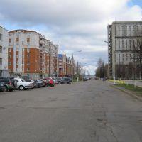 Улица Винокурова в районе спорткомплекса (Вид на север)  /  Vinokurov Street around sport centre (View on north), Новочебоксарск